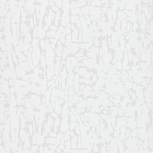Y09 Beyaz Larice
